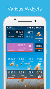 screenshot of Accupedo Pedometer - Step Counter version Varies with device