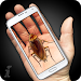 Download Cockroach Hand Funny Joke 1.7 APK