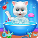 Cute Kitty Cat Care - Pet Daycare Activities Game