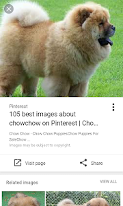 screenshot of Image Search for Google version 2.0.38