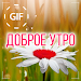 Russian Good Morning Good Day Gifs Images