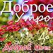 Russian Good Morning, Good Night wishes messages