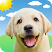 Download Weather Puppy - Forecast, Radar & Pet Dog Pictures  APK